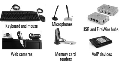 examples of computer pheripherals For example, read-only access means that the contents of the file may be  the  form in which text characters are handled in most computer systems and  networks  peripherals can be added on externally or installed inside the  machine.